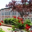 دانشگاه فنی ییلدیز Yildiz Teknik Üniversitesi